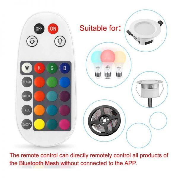 24 Keys BT Mesh Controller