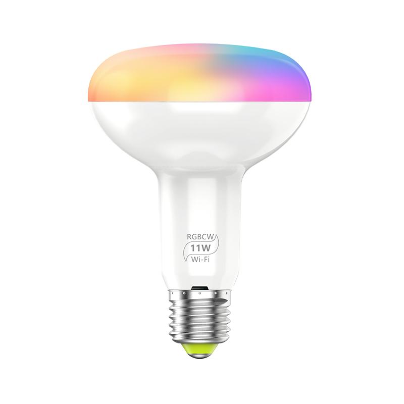 9W Smart Wifi LED Bulb