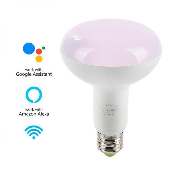 11W Smart Bulb